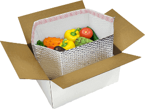 meal kit delivery box opened